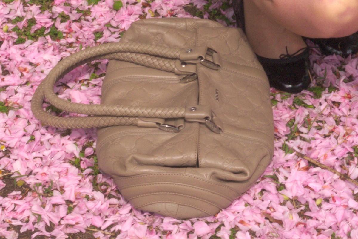 taupe joop bag with cornflower emblem