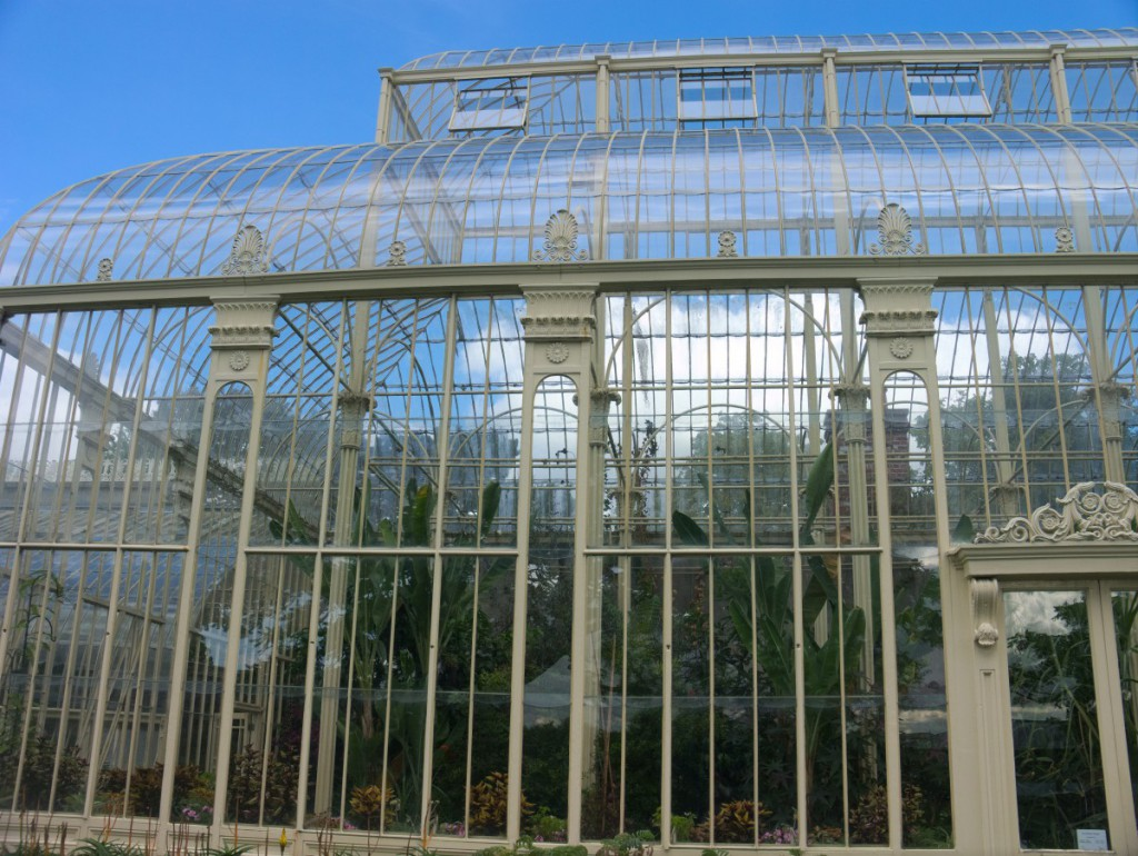 Victorian greenhouses at the botanic gardens