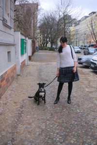 Boden British Tartan Skirt and Tora the Basenji Mix