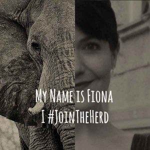 JoinTheHerd elephants