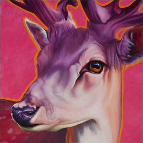 poster-hirsch-felix-pink-919055