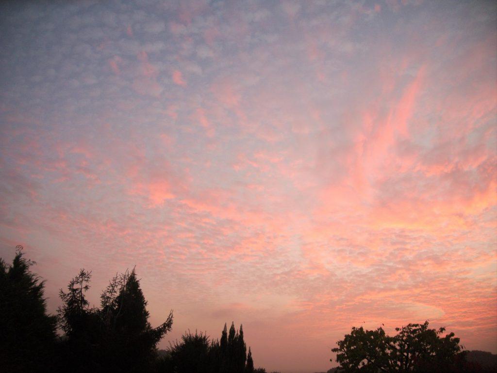pink sky at dusk