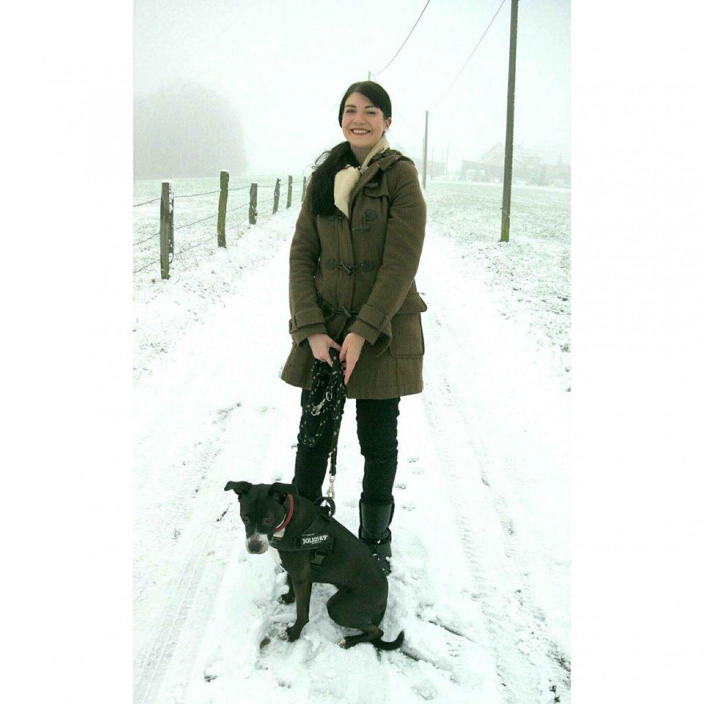 dufflecoat and basenji mix on a snowy day